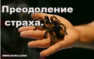 Преодоление страха.