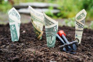 Во что вкладывать деньги, вложить деньги, куда вложить деньги, деньги нужно вкладывать, магия денег, Андрей Дуйко