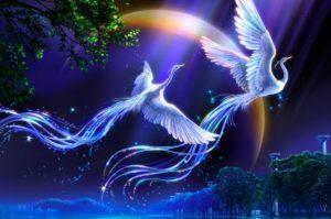 птица счастья, два крыла, счастье, эзотерика кайлас, андрей дуйко