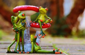 жаба, зависть, как избавиться от жабы зависти, психология, философия, эзотерика Кайлас, Андрей Дуйко