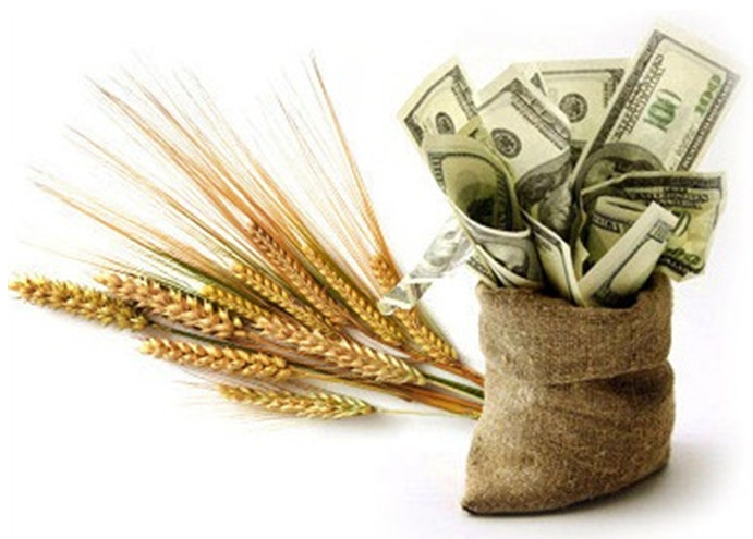 ритуал на деньги, привлечение денег, ритуал с хлебом, андрей дуйко