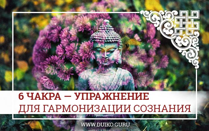 6 чарка, гармонизация сознания, практики школы, медитации школы кайлас, андрей дуйко, эзотерика кайлас,шестая ступень