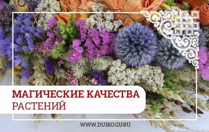магические качества трав, обряды, обрядова магия, травы для обрядов, эзотерика и магия, эзотерика кайлас, Андрей Дуйко