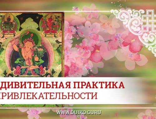 Удивительная практика Привлекательности от Андрея Дуйко