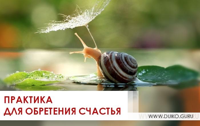 счастье, обретение счастья, практика, андрей дуйко, школа кайлас, дуйко аа